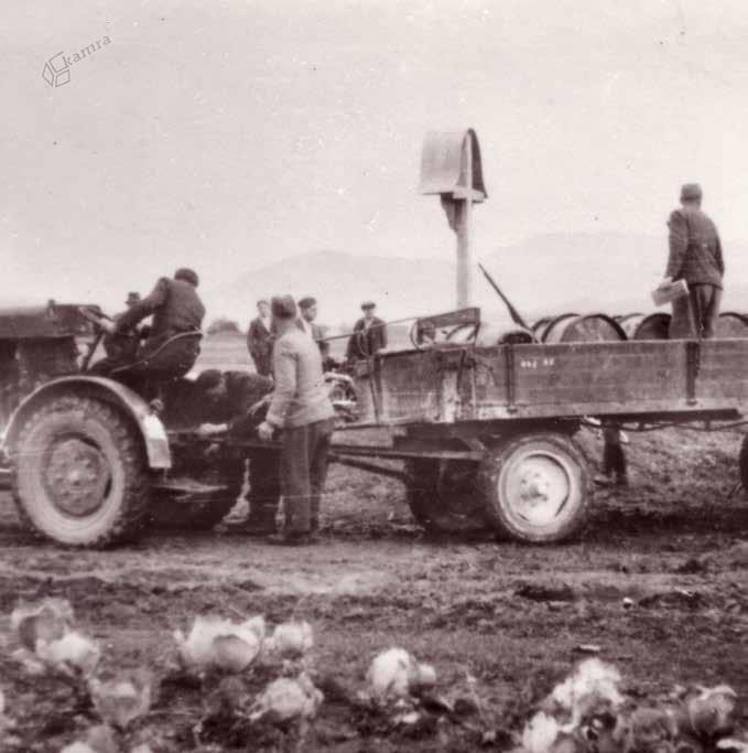 Odvoz bencina s ponesrečenega angleškega letala, november 1944