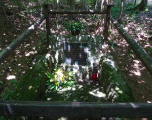 Grobišče na Strgarjevem in Koželjevem v Raduhi